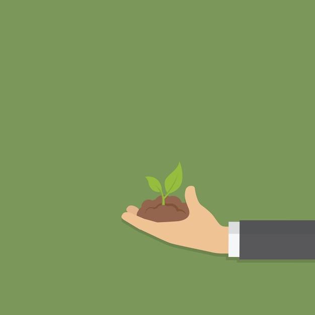 緑の若い植物を持っている手 Premiumベクター