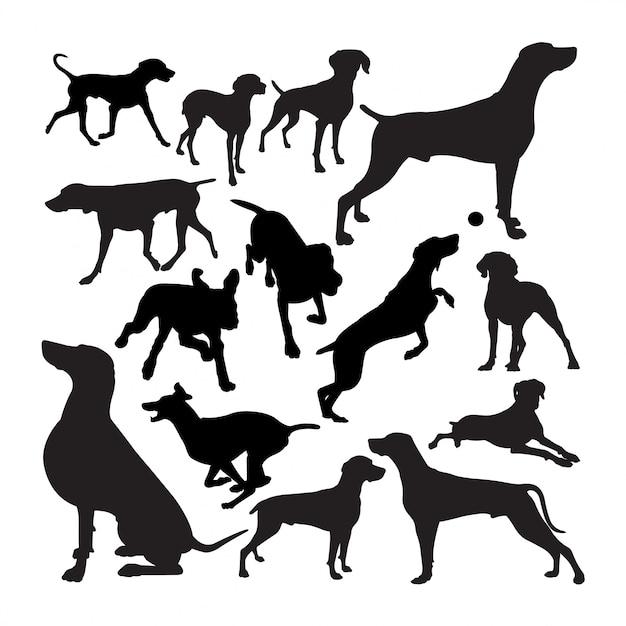 ワイマラナー犬動物のシルエット。 Premiumベクター