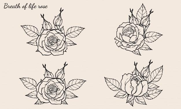 手描きのバラ飾りベクトル Premiumベクター