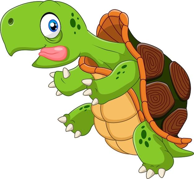 Открытка годовщину, смешная черепаха рисунок