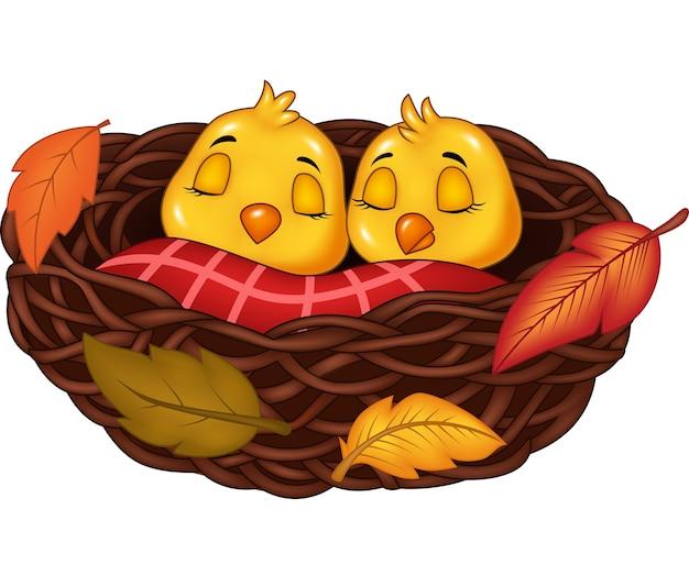 巣の中で眠っている漫画の赤ん坊の鳥 Premiumベクター