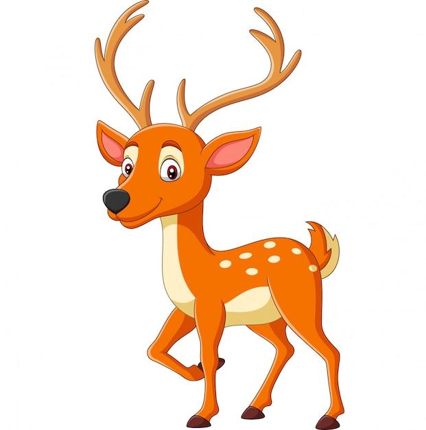 白の漫画かわいい鹿 Premiumベクター