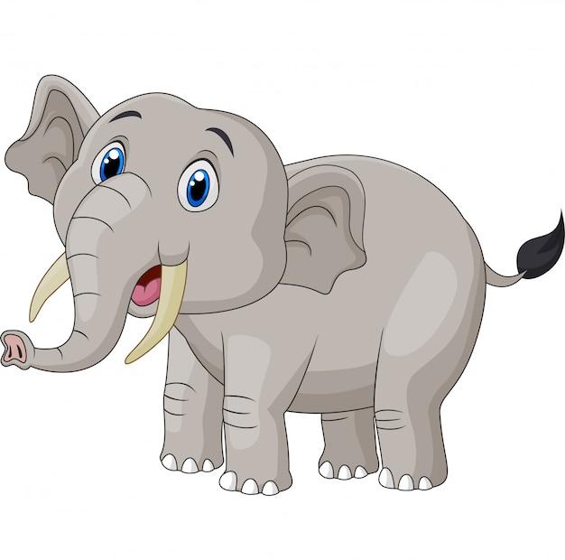 Милый мультфильм слон на белом фоне Premium векторы