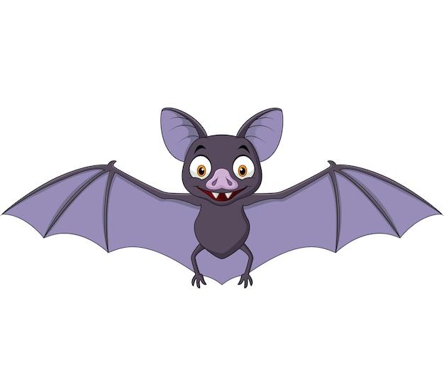 Картинка из мультфильма летучая мышь