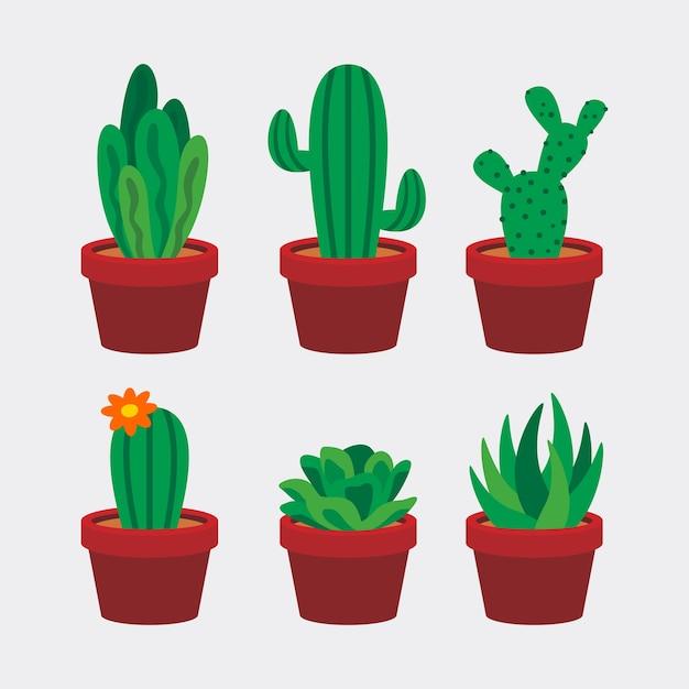 サボテンと多肉植物のイラスト ベクター画像 プレミアムダウンロード