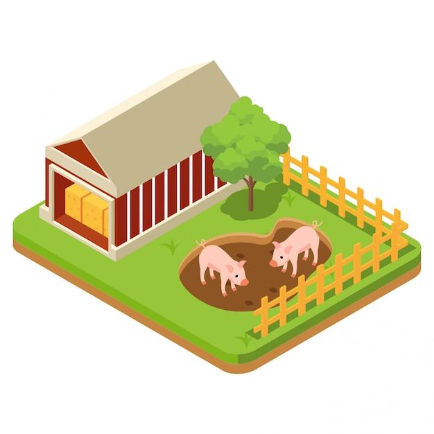 パドックで豚を含む家畜 Premiumベクター