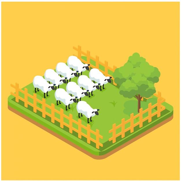 Производство шерстяного материала изометрические композиции с изображениями овец, поедающих на траве на ферме страницу векторной иллюстрации Premium векторы