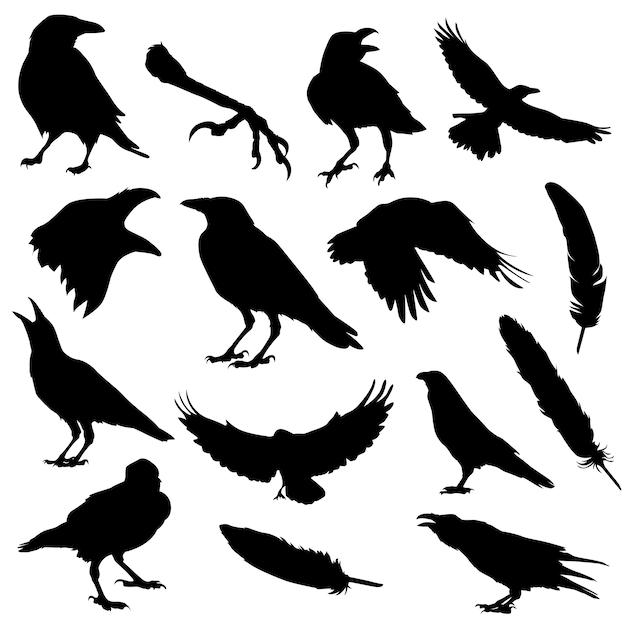 Ворон птица хэллоуин силуэт Premium векторы