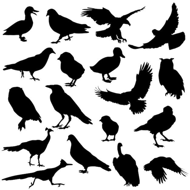 Силуэтные рисунки животных и птиц