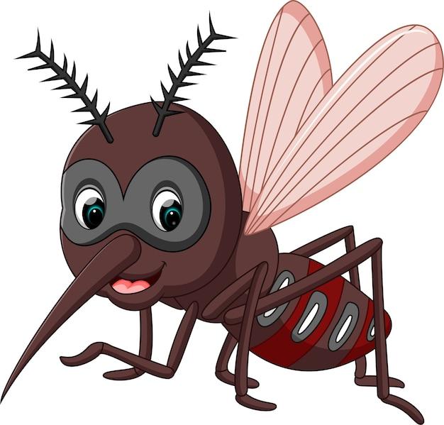 Картинка мухи для маски