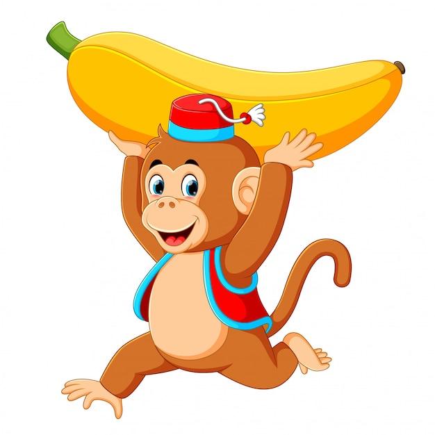 バナナで遊んでサーカス猿 Premiumベクター