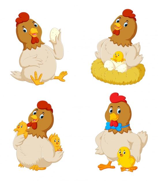 さまざまなポーズでかわいい鶏のコレクション Premiumベクター