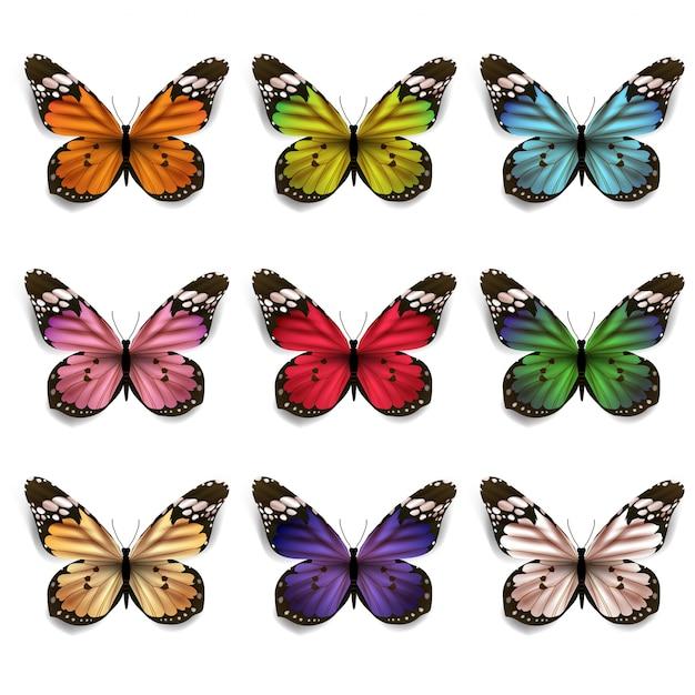 カラフルな蝶のセット Premiumベクター