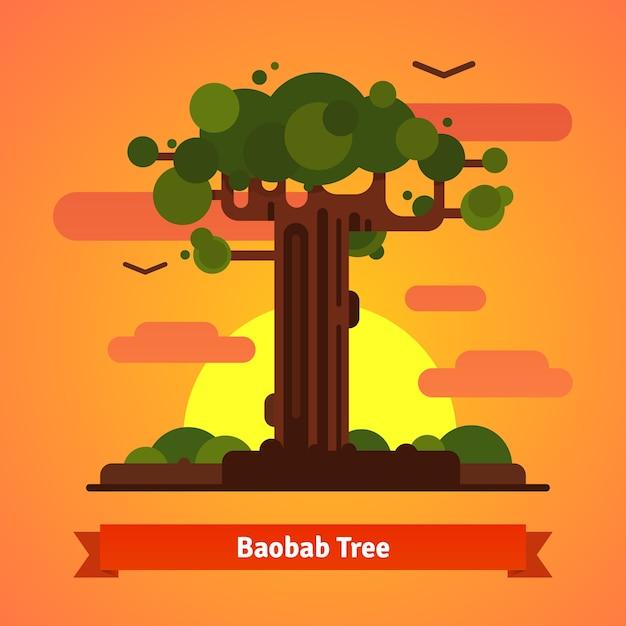 バオバブの木の夜の夕焼けのシーン 無料ベクター