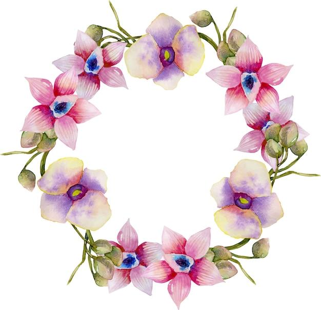 水彩のピンクと紫の蘭の花輪 Premiumベクター