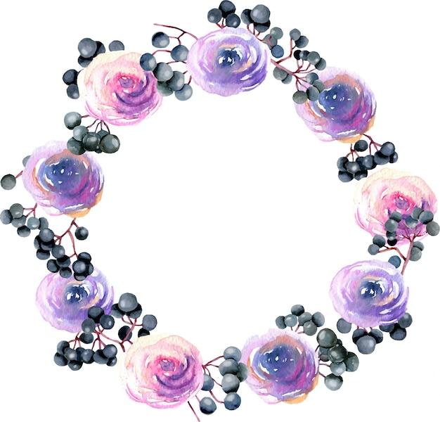 水彩のピンク、紫のバラとニワトコの枝と花輪 Premiumベクター