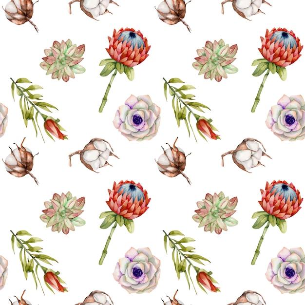 水彩のプロテアの花、綿、多肉植物のシームレスパターン Premiumベクター