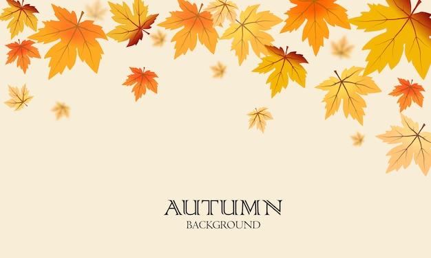 Осенние кленовые листья фон Premium векторы