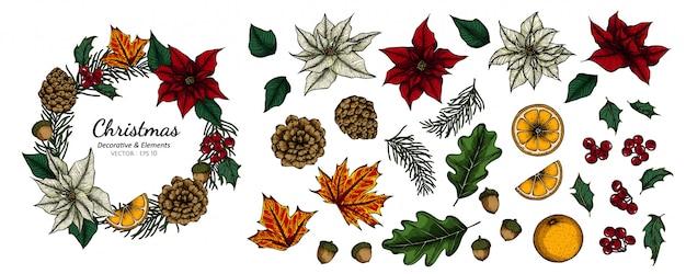 Комплект собрания цветка рождества декоративного и иллюстрации чертежа листьев. Premium векторы