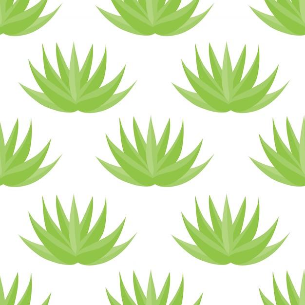 アロエベラ植物のシームレスパターン Premiumベクター