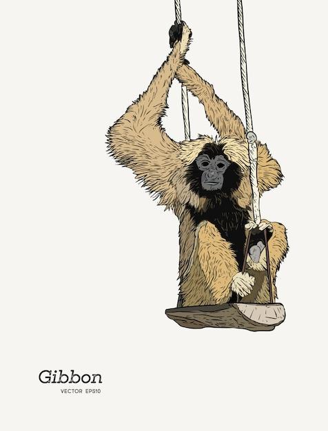 ギボンの猿のスケッチのグラフィックの描画。 Premiumベクター