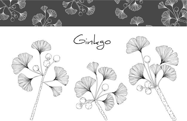 イチョウの葉や花の絵 Premiumベクター