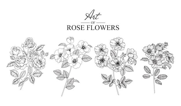 Розовый набор листовые и цветочные рисунки. Premium векторы