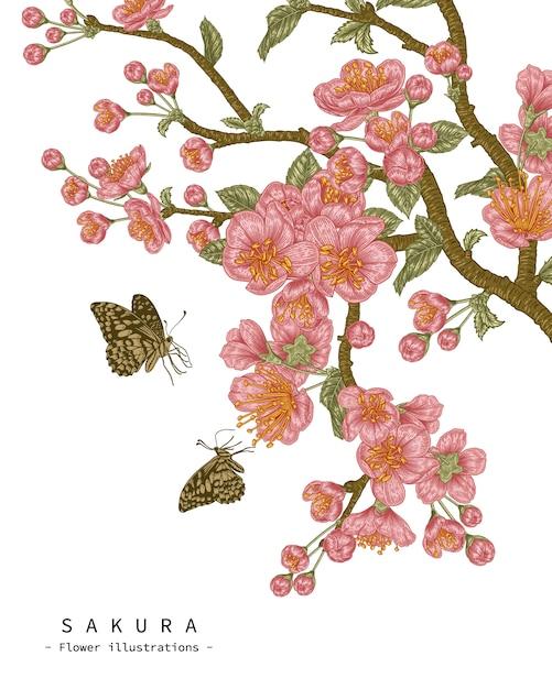 Эскиз цветочный декоративный набор. черри блоссом цветочные рисунки. старинные линии искусства изолированы. рисованной ботанические иллюстрации. Premium векторы
