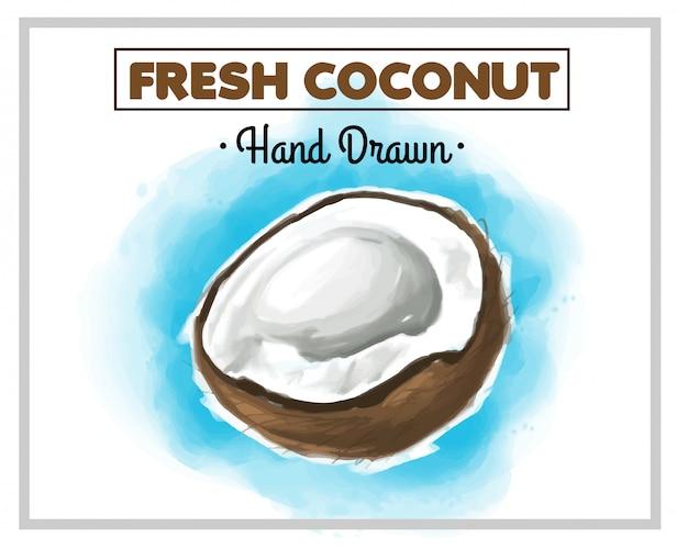Свежий рисованный кокос с синим фоном позади Premium векторы