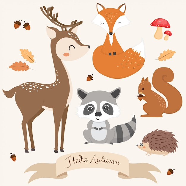 Набор милых лесных животных. Premium векторы