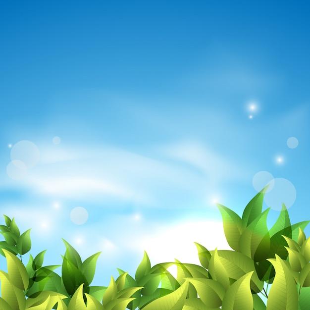 空に対して緑の葉と夏の背景。 Premiumベクター
