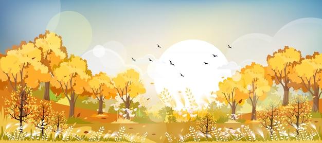 黄色とオレンジ色の葉で秋のフィールドを風景します。 Premiumベクター