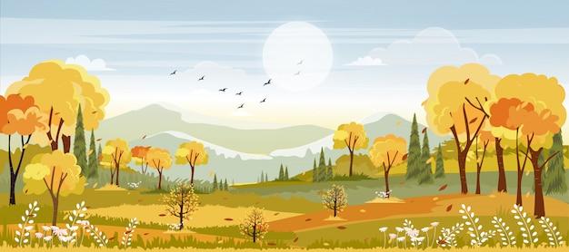 秋の田園風景、中秋のパノラマ、オレンジと黄色の葉の畑、秋のパノラマビュー Premiumベクター
