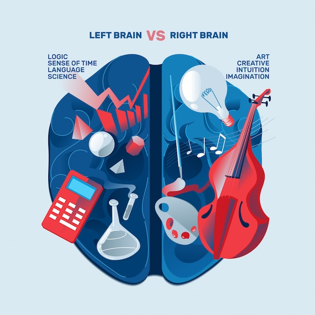 Левый правый человеческий мозг концепции. творческая часть и логическая часть Premium векторы