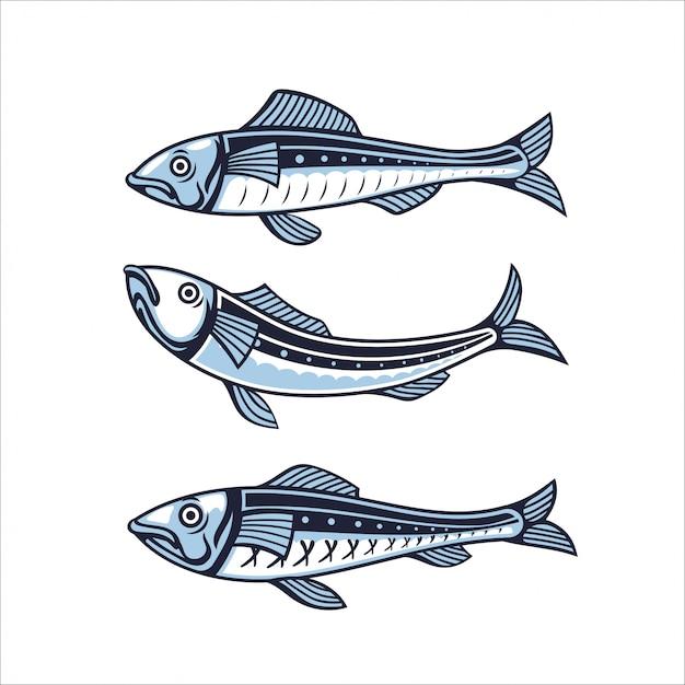Набор сардины. иллюстрация рыбы Premium векторы