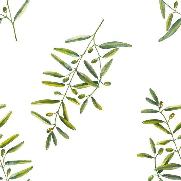 水彩画のオリーブの枝のシームレスパターン Premiumベクター