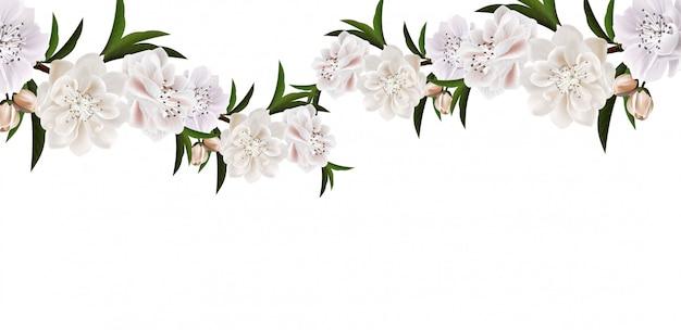 花と白い背景の葉と桜の枝。 Premiumベクター