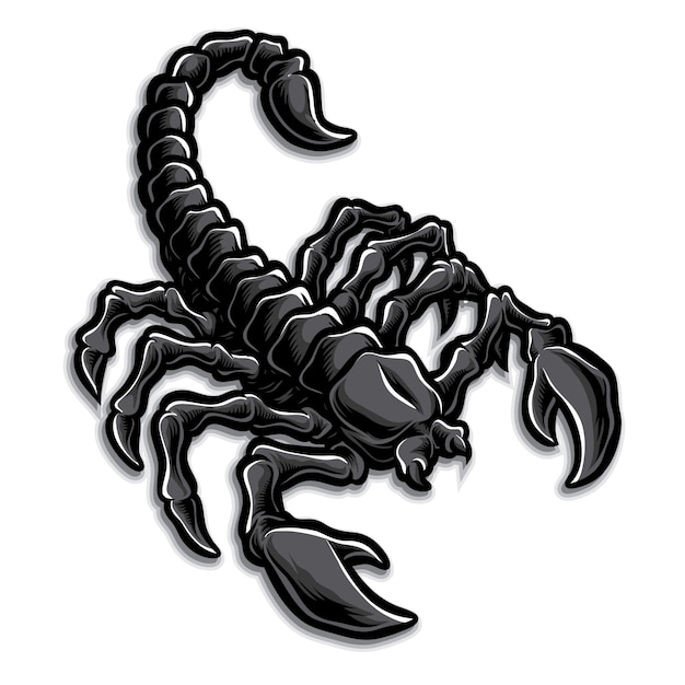 Логотип скорпион Premium векторы