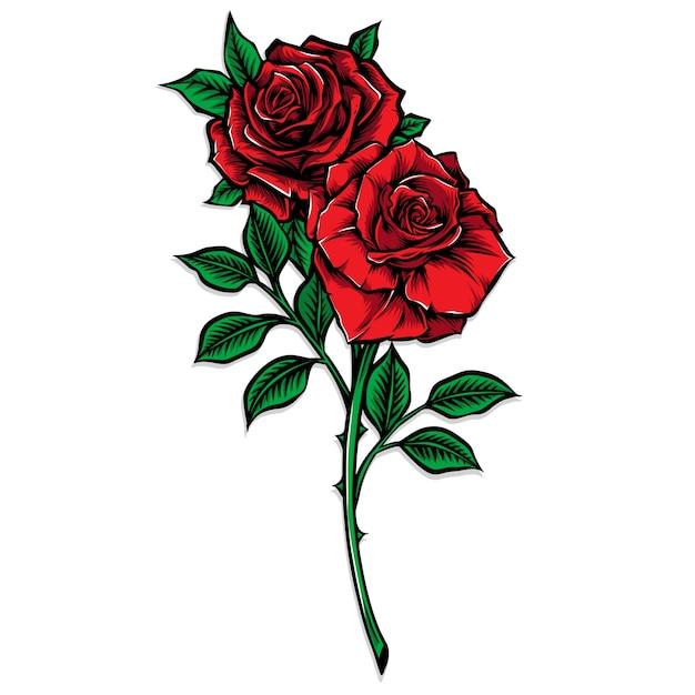 Красная роза стволовых векторная иллюстрация Premium векторы