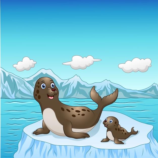 подпиши рисунки тюлень на льдине сделать снимок