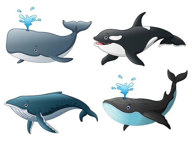 Векторная иллюстрация набор морских морских рыб Premium векторы
