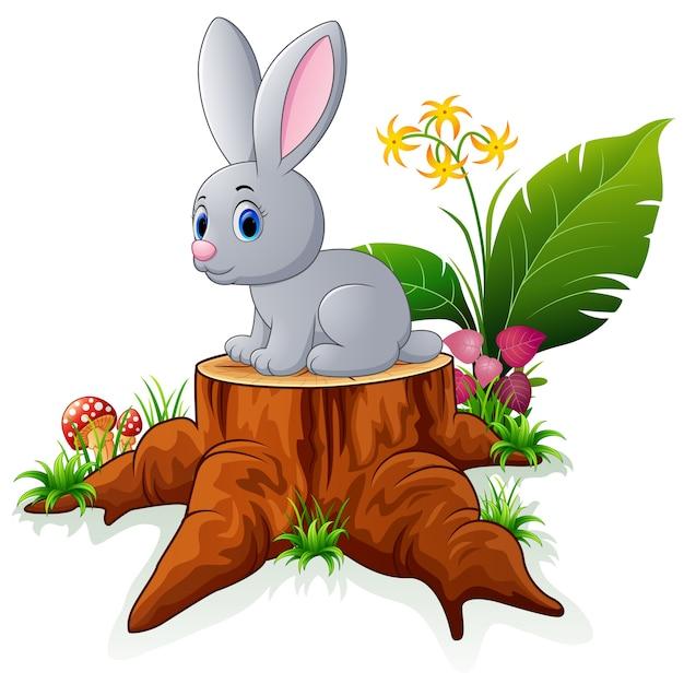вашему заяц на пеньке рисунок необходимости короткий