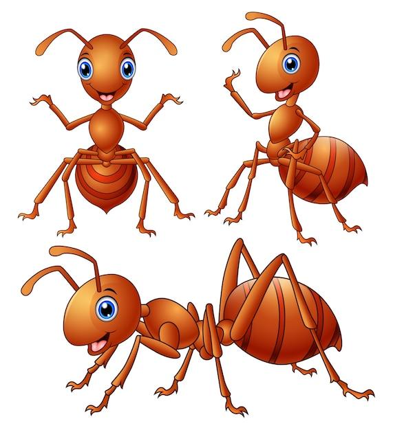 茶色のアリの漫画のセットのベクトル図 Premiumベクター