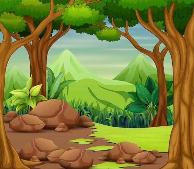 木々と美しい風景の森のシーン Premiumベクター
