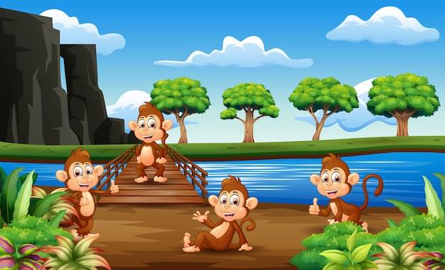 猿漫画の木製の橋の外に出かける Premiumベクター