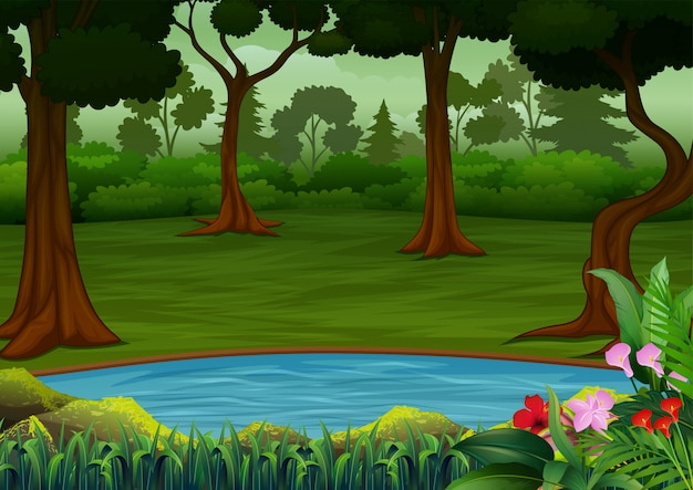 多くの木と小さな池のある暗い森のシーン Premiumベクター