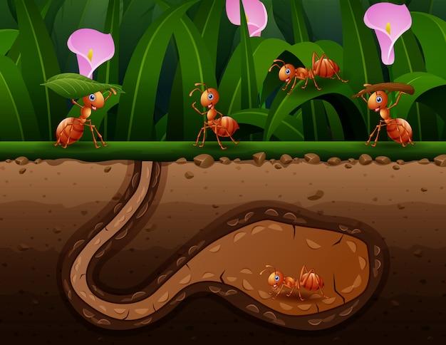 穴の図に働く蟻のグループ Premiumベクター