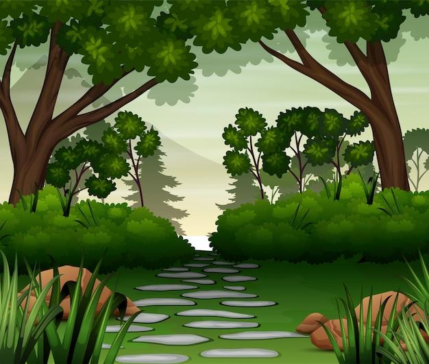 Каменная дорога в лесу Premium векторы