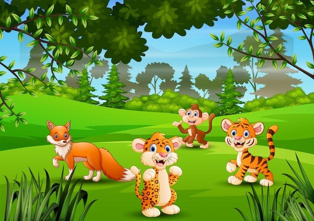 Дикое животное играет в джунглях Premium векторы