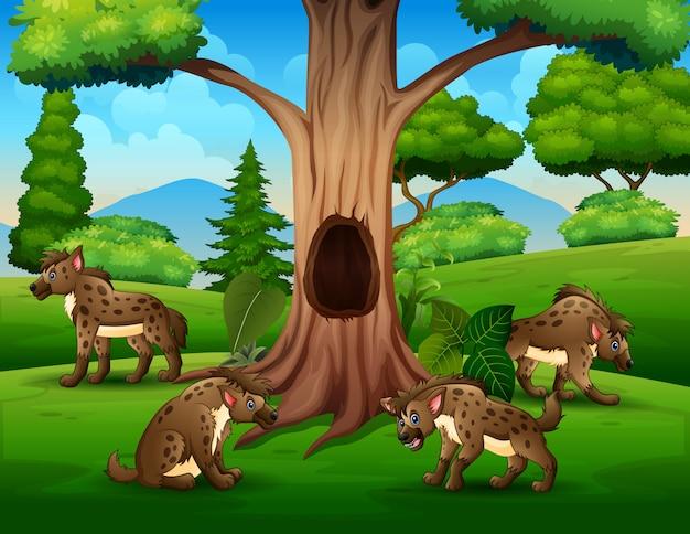 Группа гиены играет под полым деревом пейзаж Premium векторы